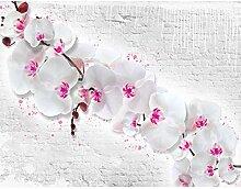 Fototapete Blumen Orchidee Steinwand Vlies Wand