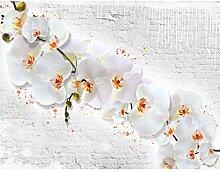 Fototapete Blumen Orchidee Steinwand-Vlies Wand