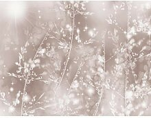 Fototapete Blumen Pusteblume 352 x 250 cm - Vlies