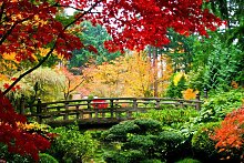 Fototapete Bridge in Japanese Garden, Home affaire