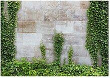 Fototapete Der vergessene Garten East Urban Home