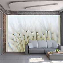 Fototapete Ein Wald aus Pusteblumen cm 300x231