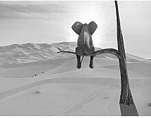 Fototapete Elefant Vlies Wand Tapete Wohnzimmer