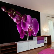 Fototapete elegant Orchidee 193 cm x 250 cm