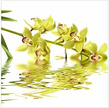 Fototapete Elegante Orchidee im Wasser