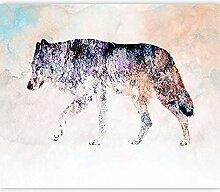 Fototapete Farbe Wolf 3D Wandbilder Für Fernseher