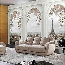 Fototapete Fenster-Steinsäulen-Paris-nichtgewebte