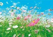 Fototapete Flower Meadow (8tlg.)