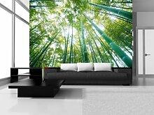 Fototapete Fototapeten Tapeten Tapete Wandbild Bambuswald BAUM 150 P4