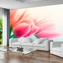Fototapete - Frühling und Tulpen