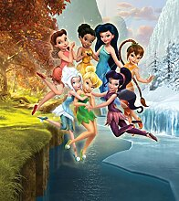 Fototapete FTDNxl5105 Photomurals Disney Fairies