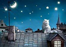 Fototapete FTNm2606 Photomurals Katze