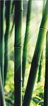 Fototapete FTNv2856 Photomurals Bambus