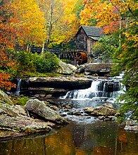 Fototapete FTNxl 2503 Photomurals Wasser Mühle