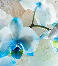 Fototapete FTNxl 2518 Photomurals Blumen