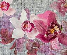 Fototapete FTNxxl1148, Orchideen