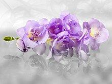 Fototapete FTNxxl2400, Orchidee 3D
