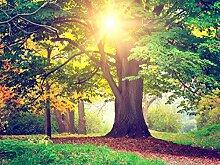 Fototapete FTNxxl2424 Photomurals rote Baum