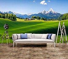 Fototapete für Wand, Landschaft, Pastoral, Grün,
