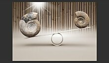 Fototapete Fun with Fossils 245 cm x 350 cm