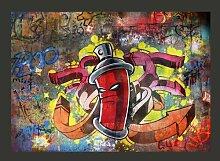 Fototapete Graffiti Monster 245 cm x 350 cm