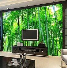 Fototapete Grüne Bambuswaldlandschaft Moderne