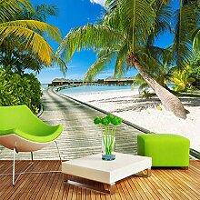 Fototapete Grüne Kokosnussbaum-Landschaft mit
