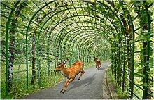 Fototapete Grüne Weinwildlandschaft 150x105cm