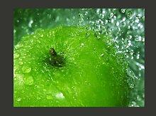 Fototapete Grünes Apfel 309 cm x 400 cm