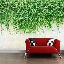 Fototapete Grünes Gras 3D Wandbilder Für