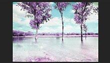 Fototapete Heather Landschaft 245 cm x 350 cm