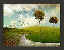 Fototapete Herbst - Landschaft 270 cm x 350 cm