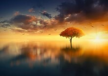 Fototapete Himmel Baum 0.70 m x 104 cm