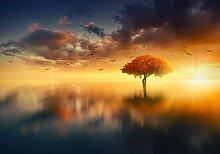 Fototapete Himmel Baum Papier 1.84 m x 254 cm East