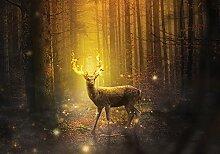 Fototapete Hirsch im Wald Tiere Modern