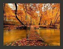 Fototapete Holzbrücke im Wald 270 cm x 350 cm