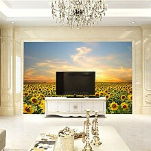 Fototapete Home Haus Tapete Sonnenblumenmeer