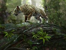Fototapete Jaguar on the Prowl, Home affaire
