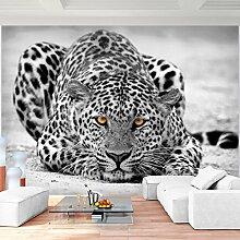 Fototapete Leopard 352 x 250 cm Vlies Wand Tapete
