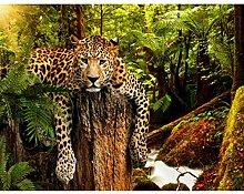 Fototapete Leopard Afrika 396 x 280 cm Vlies Wand