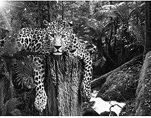 Fototapete Leopard Afrika Vlies Wand Tapete