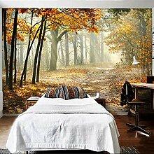 Fototapete Modern Autumn Forest 3D Wandbild