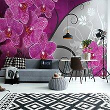 Fototapete Moderne Orchidee in Rosa 3,12 m x 219