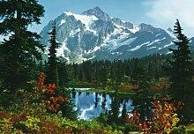 Fototapete Motivtapete Bildtapete Mountain Morning Berge Gebirge Kanada See Bergsee Wald Wälder Wall Mural 8-Teilig - Größe 366 x 254 cm