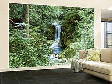 Fototapete Motivtapete Bildtapete Wall Mural Waterfall in Spring Wasserfall im Frühling Fluss Natur Wildnis Dschungel Regenwald Urwald - 8-teilig - Größe 366 x 254 cm