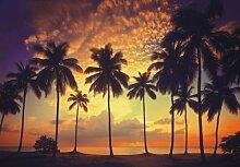 Fototapete Motivtapete Postertapete Sunset -