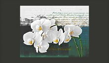 Fototapete Orchidee - Inspiration des Dichters