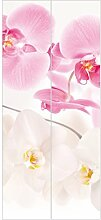 Fototapete Orchidee - Vliestapete Tür - Delicate