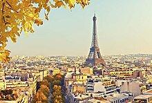 Fototapete Panorama Auto PARIS 4x2,70m Deko + Bild