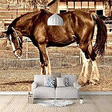 Fototapete Pferd 3D Wandbilder Für Fernseher